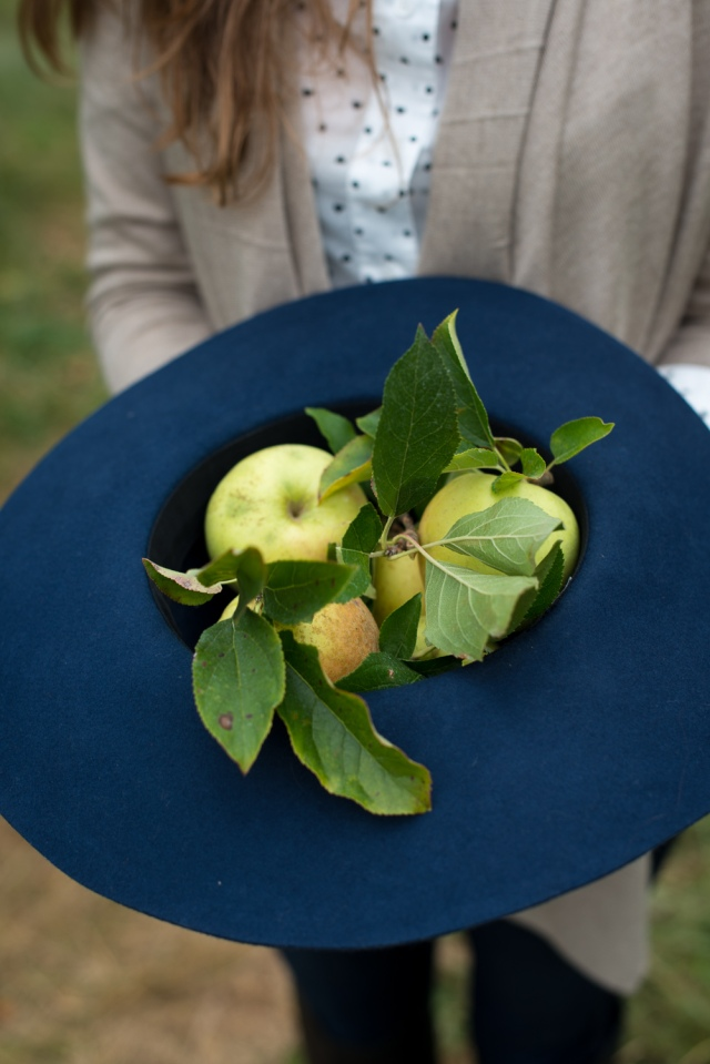 Apple Picking - Jackietara blog