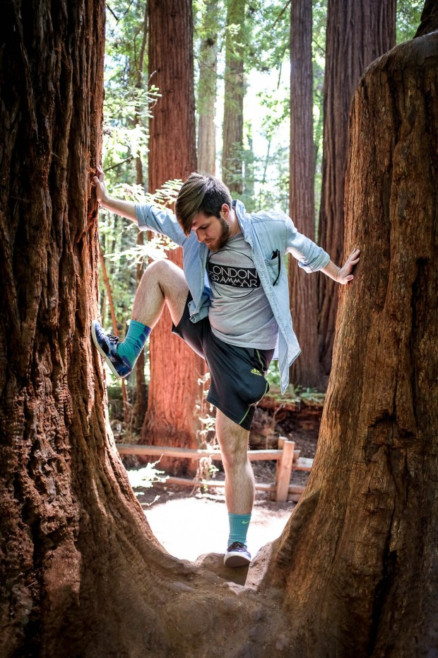 Redwoods-5